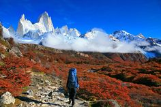 Picture of a backpacker in Glaciers National Park, Argentina