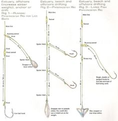 how to rig for saltwater pier fishing - Google Search