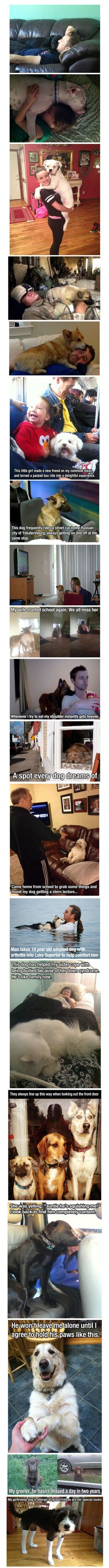 This is why I love dogs so much