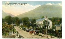 West Saugerties NY - ROAD TO NOTCH - Postcard