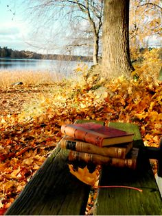 Surrounded by the beauty of autumn is the perfect time to make a dent in that to be read list.