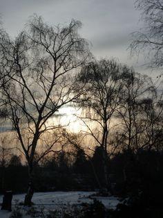 Boxing Day at Frensham Ponds, Surrey.