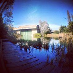 Foto tomada en Jardim da Fundação Calouste Gulbenkian por Pedro B. el 12/10/2012