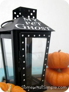 "LOVE this idea for Halloween! Make a ""pet ghost"" with www.SomewhatSimple.com"