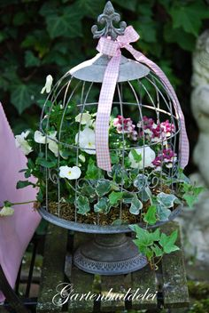 Pansies, Snapdragons, Ivy and moss in a birdcage planter