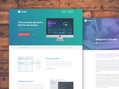 Site design - SolveBio.com splash