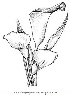 Would a bunch of flowers work better Line Drawing, Drawing Sketches, Pencil Drawings, Art Drawings, Fabric Painting, Watercolor Paintings, Dibujos Cute, Black And White Painting, Silhouette Vector