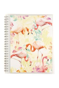 a4 display folder FLAMINGOS