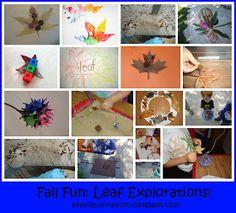 PreKandKSharing: Fall Fun: Leaf Explorations!