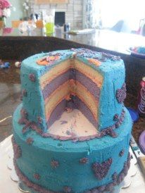 Doc McStuffins Cake -Inside Layers