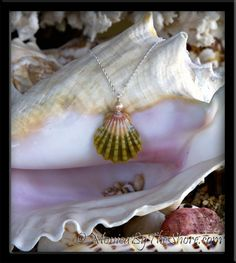 Pastel Pink & Green Sunrise Shell & Pink Pearl Pendant Silver Necklace