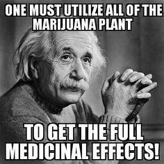 An awesome Einstein quote, perhaps one of his most iconic ones  #AlbertEinstein #Einstein #Relative #Relativity #Theory #CBD #Marijuana #medicinal #QOTD #Genius #Creative #Thinker #Sciences #Hemp #meme #ThrowbackThursday #Germany #USA #Knowledge #Crazy #Legend #Awesome #Teacher #Scientists