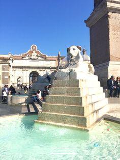 The Lion  #piazzadelpopolo #Rome #travel #visitrome #photography #fountain #square