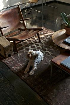 chair, rug and dog love.  Designer Visit: Scott Newkirk in Brooklyn from remodelista