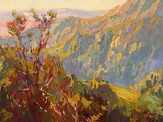 Carole Gray-Weihman - Northern CA Colorist