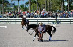 Pat Parelli and JJ Tate at the Dressage Summit showing how groundwork relates to riding! More photos and videos on facebook.com/dressagesummit