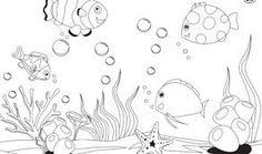Risultati immagini per disegni da colorare sul mese di giugno per bambini