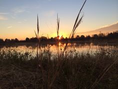Only one of the many reasons I love duck hunting! Hunting Stuff, Duck Hunting, 4 Life, Fishing, Celestial, Bird, Sunset, Outdoor, Outdoors