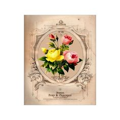 Pink and Yellow Flowers IV - Flower Artwork - Floral Art Print - 8x10 Print - French Country Style - Cottage Chic Style Decor