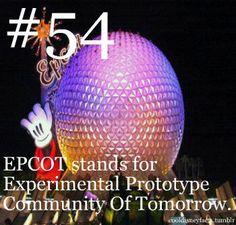 EPCOT Stands For Experimental Prototype Community Of Tomorrow. Disney Diy, Disney Love, Disney Magic, Disney Pixar, Disney Stuff, Punk Disney, Disneyland Secrets, Disney Secrets, Disneyland Resort