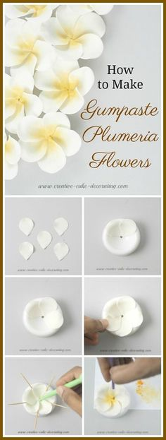 White Wedding Cakes Here is a plumeria wedding cake I designed with gumpaste plumeria flowers (also known as Frangipani flowers). Read on for step by step guide on how to make this cake. Cake Decorating With Fondant, Creative Cake Decorating, Cake Decorating Techniques, Cake Decorating Tutorials, Decorating Ideas, Buttercream Flowers, Fondant Flowers, Sugar Flowers, Buttercream Frosting