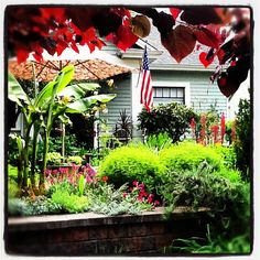 Flag Day in the Fishingham Garden | 06.14.12 | Photo by Jeff Fisher