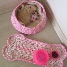 Genteeee aprovei minha caminha nova e adorei meu enxoval!! #boanoite #fiodemalha #crochet #crochê #crochetlover #handmade #feitoamao #lulu #spitzalemao #sextafeira #satolep #decor #instapet #feitocomamor #artesanal #pom