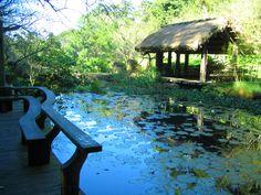 Jardim Botânico Natural Ecológico. Condado de Miaoli, Taiwan.  Fotografia: Youreddie.