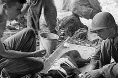 Miembros del Ejército cuidan a un perro que fue herido durante los combates. Cabe destacar que se desconoce la cantidad de animales que resultaron heridos durante el conflicto, pero se asume que muchos murieron debido a los bombardeos que hubo.