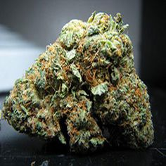 Buy the Highest Quality Marijuana strains such as  White Widow,sour Diesel,Harlequin,Canatonic,Blue dream, afghani kush,OG Kush,Lemon haze,granddaddy purple, Moonrocks,Cannabis oil for patients with illness like cancer,  pain,insomnia, anxiety, liver problem, epilepsy and more Order weed online, Buy weed online, Buy Marijuana online, Cannabis oil for sale,kush for sale,wax for sale,hash oil ,buy moonrocks online   www.jerrycannabisdispensary.com. call or text 4242347308