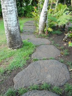 Give your garden path or walkway some flair with these easy to make, one of akindsteppingstones.