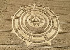 Crop circles | http://www.cropcircleconnector.com/2007/pewsey/pewsey2007.html