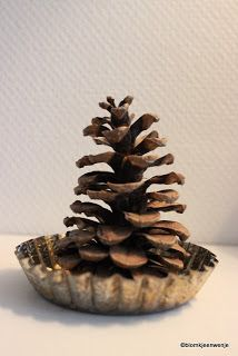 Pinecone in a baking tin