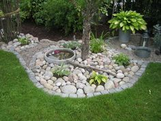 Stones with 5 plants + edges encircling tree gestaltungsideen steine wasser mini reich pflanzen rasen Landscaping With Rocks, Backyard Landscaping, Lawn And Garden, Garden Beds, Diy Garden, Terrace Garden, Small Gardens, Outdoor Gardens, Coastal Gardens