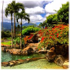 Hanalei Bay Resort, Kauai...where I stayed. It was an incredible resort in a perfect location. I want to go back!