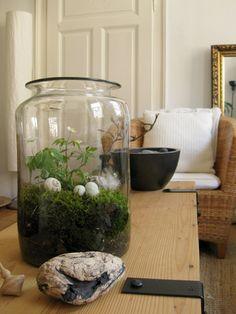 Ostern im Glas . Easter in the jar.......Ein bisschen Moos, ein Buschwindröschen, ein Schneckenhaus, ein paar Entenfedern...  A bit of moss, an anemone, a snail shell, a few duck feathers ...