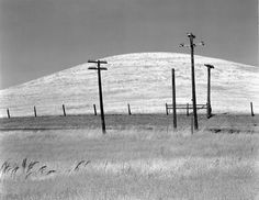 "arsvitaest: ""Edward Weston, Hills and Poles, Solano County, 1937 The Metropolitan Museum of Art "" Photography Gallery, Contemporary Photography, Urban Photography, Landscape Photography, Minimalist Photography, Photography Lessons, Edward Weston, Art Corner, Great Photographers"