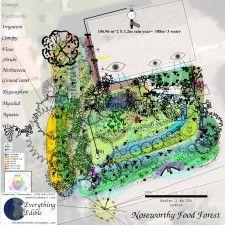Food forest design Forest Design, Edible Plants, Food, Woods, Meal, Eten, Meals