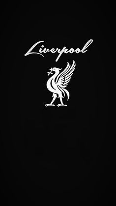 Lfc Wallpaper, Liverpool Fc Wallpaper, Liverpool Wallpapers, Liverpool Fans, Liverpool Football Club, Comedian Quotes, Red Day, You'll Never Walk Alone, Funny Pics