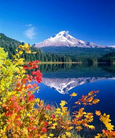 Trillium Lake & Mt Hood, Oregon