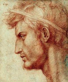 Andrea del Sarto, Study for the Head of Julius Caesar #sarto #drawing