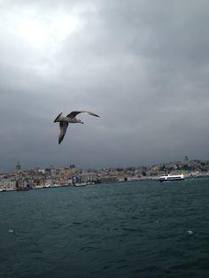 İstanbul'un manzarasından...