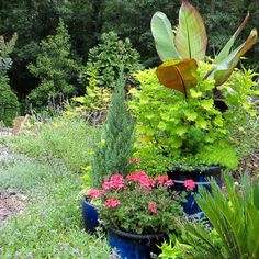 path planting - Google Search