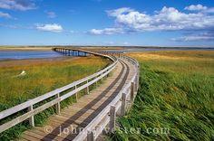 beach;dunes;Kellys Beach;Kouchibouguac National Park;New Brunswick;Canada;landscape;scenic;evening;nature;environment;Gulf of St. Lawrence;coast;coastal;marram grass;boardwalk