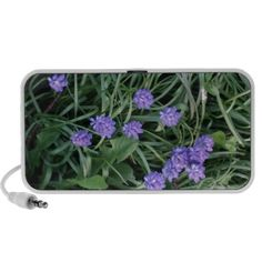 common grape hyacinth,  blue purple flower,floral traveling speakers http://www.zazzle.com/common_grape_hyacinth_blue_purple_flower_floral_speaker-166876218297087098?rf=238290304201005220&tc=pifa add your own text!