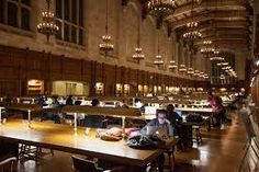 Image result for studying library