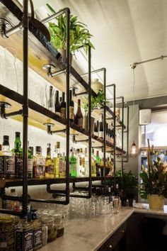 Inspiration for bar back Project - HARTSYARD:Seed - Architizer industrial bar back bar, bottle display