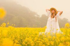 field of yellow