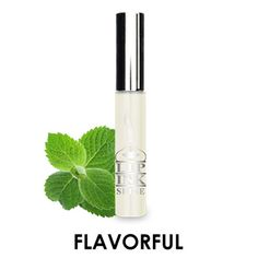LIP INK Flavored Lip Gloss Shine Moisturizers  Spearmint