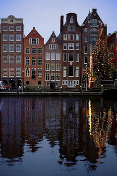 Damrak Christmas tree, Amsterdam, Netherlands